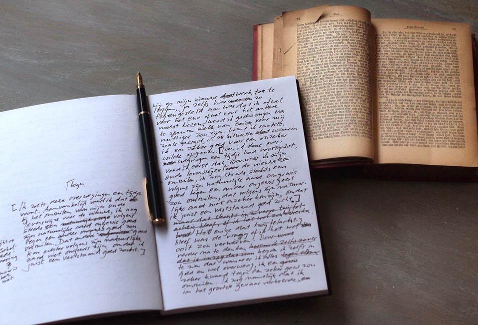 hudozestvenniy perevod literaturi v zaporozie-min